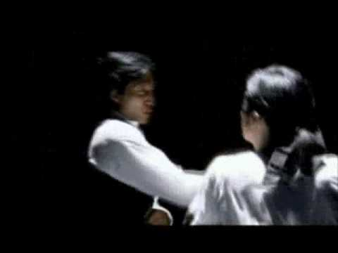 Download Wing Chun Training 詠春聽勁