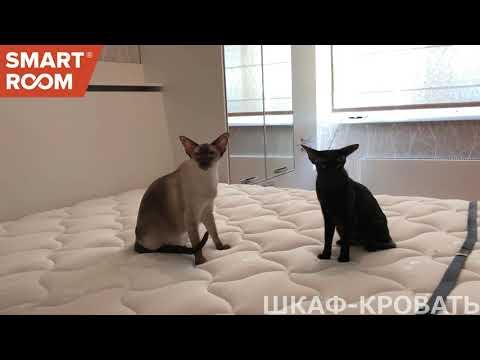 Шкаф-кровать Smart Room на ул.Киренского. Красноярск