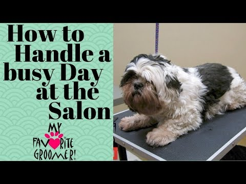 How to handle a busy day at the salon