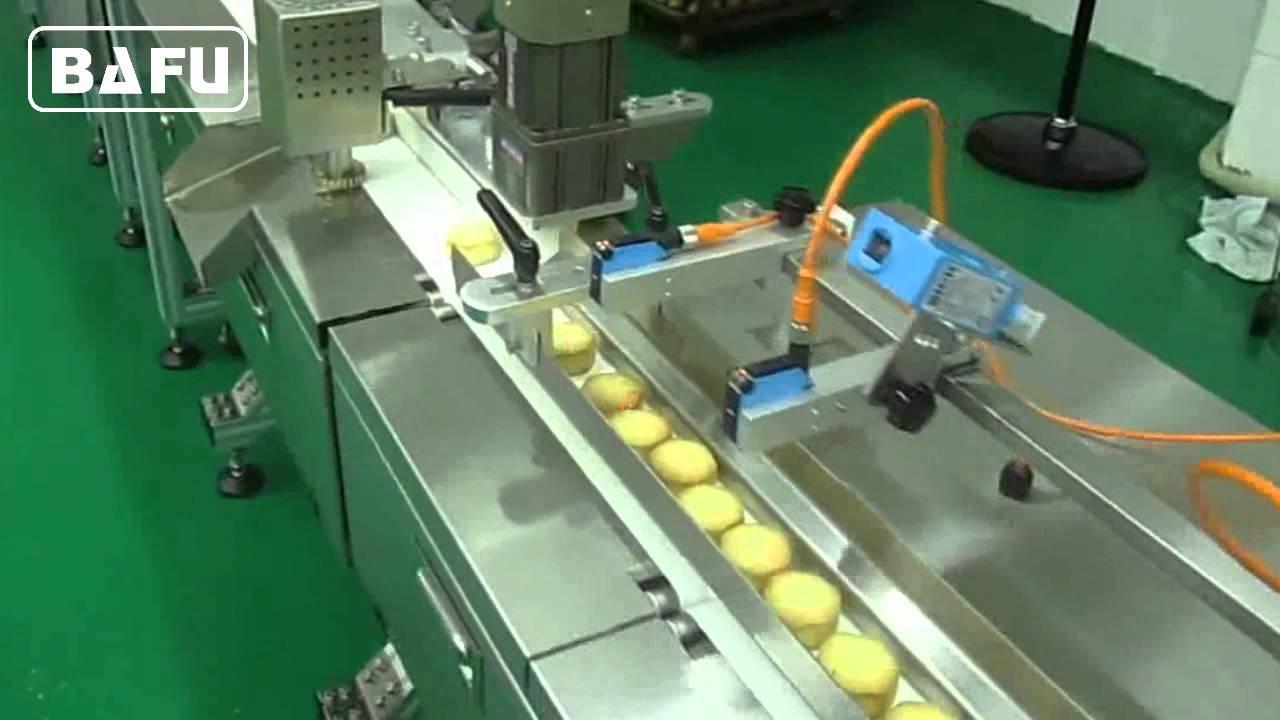 China Multi-Row Biscuit Packing Machine (SF-CW) - China