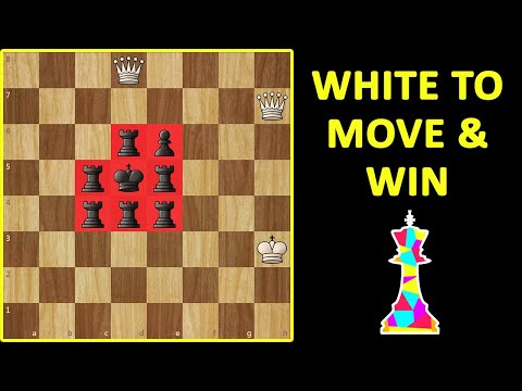 Chess Challenge | Solve This If YOU Are a GENIUS | Chess Endgame Puzzle, Tactics, Moves & Ideas
