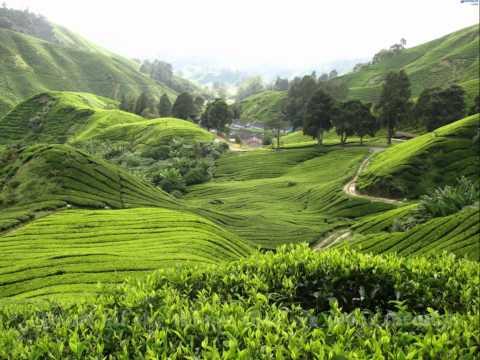 Paradise - Maher Zain (breathtaking scenes)