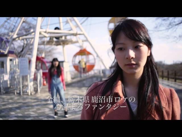 映画『ネコヤドのハルとアキ』予告編