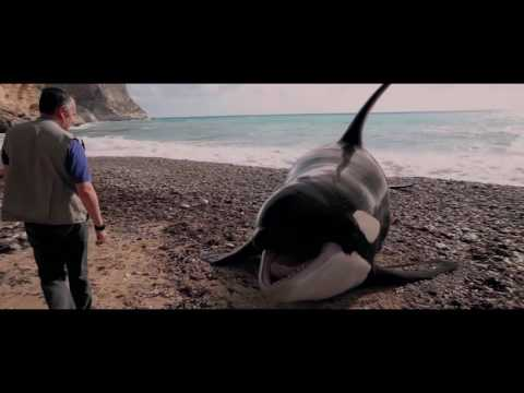 [El faro de las orcas] Píldoras Making: Animatronic