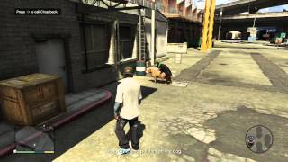 Horney Dog Grand Theft Auto V Rockstar Humor Lg1t