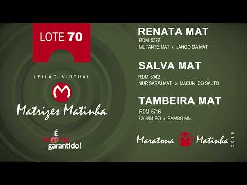LOTE 70 Matrizes Matinha 2019