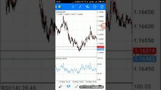 Forex Indonesia profit 1000 pips # 3 close profit