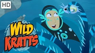 Wild Kratts 🐚 Surviving Under the Sea | Kids Videos