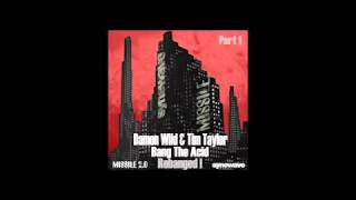 Damon Wild & Tim Taylor - Bang The Acid Rebanged! (The Advent Vs Industrialyzer Remix)