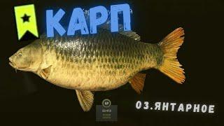 Русская рыбалка 4 РР4 озеро Янтарное КАРП