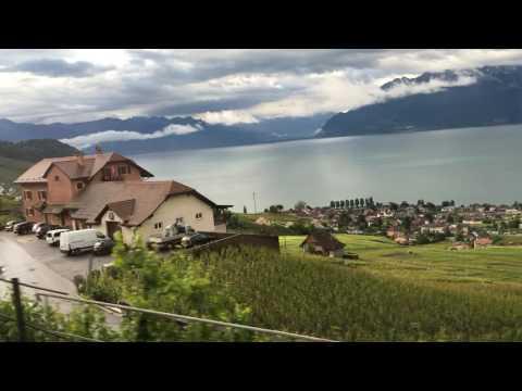 スイス発 ラヴォー地区の葡萄畑とレマン湖の眺め、さすがユネスコ世界遺産【スイス情報.com】