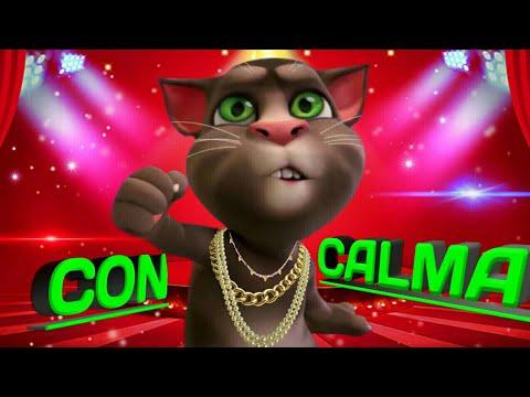 Con Calma _ Daddy Yankee, Snow N/ Gato Tom