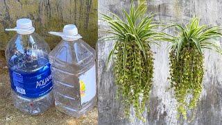 Ideias Para O Cultivo De Plantas Em Garrafas De Plástico