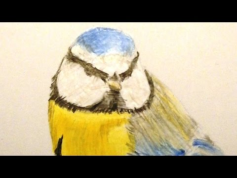 Einen Vogel malen - 3 Beispiele - Three ways to paint a Bird