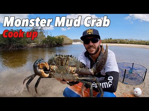 SMALL BOAT = BIG ADVENTURE - Monster Mud Crab Catch, Clean & Cook 2 Ways. Solo Tinny Camping Trip