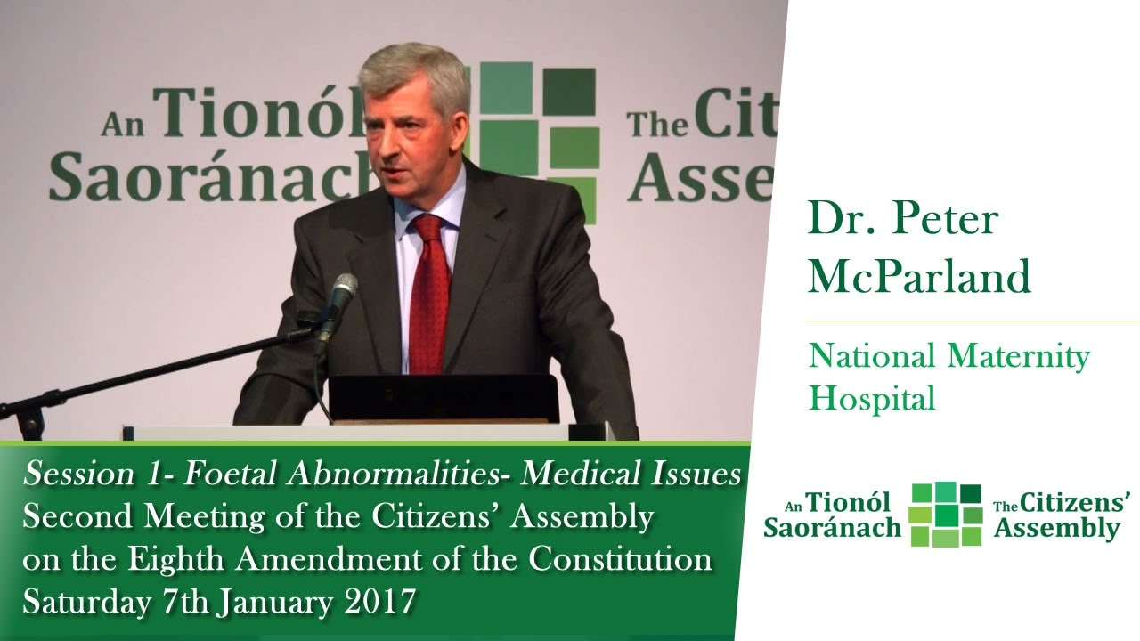 Dr Peter McParland - Second Meeting of the Citizens' Assembly - Jan 7 2017