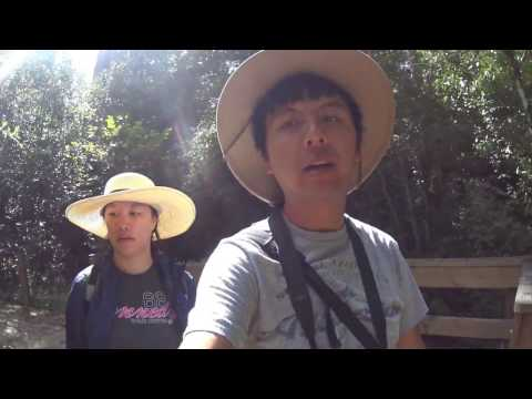 JSAdventure #255 - Texas NP Trip Day 10 - Big Thicket National Preserve (中英字幕)