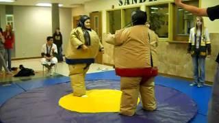 funny sumo suit wrestling