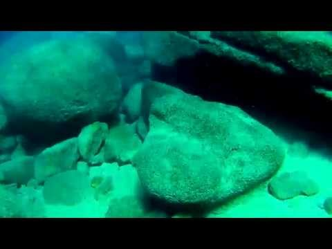 Tahoe Scuba diving.(FULL)With Sony Action cam,  Adventure Scuba. Padi Certificaition class