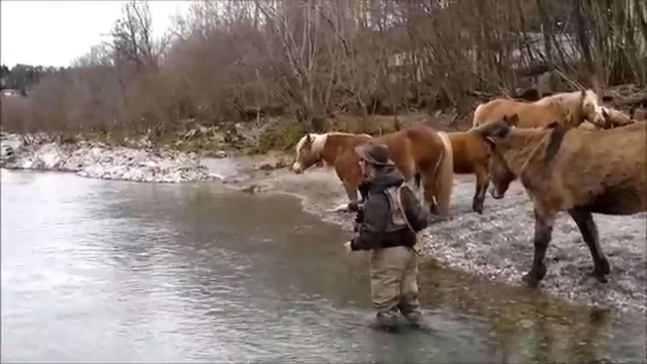 La pesca su una specie rara dei pesci