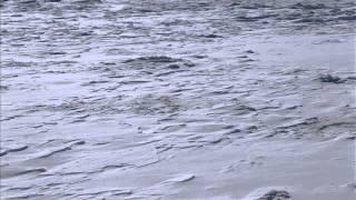 Moby - A Case For Shame (JK Mix)