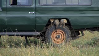 Funny moments in Africa