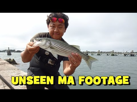 TLFF: UNSEEN MA Footage (Stripers & Etc) ft. Symplex Fishing