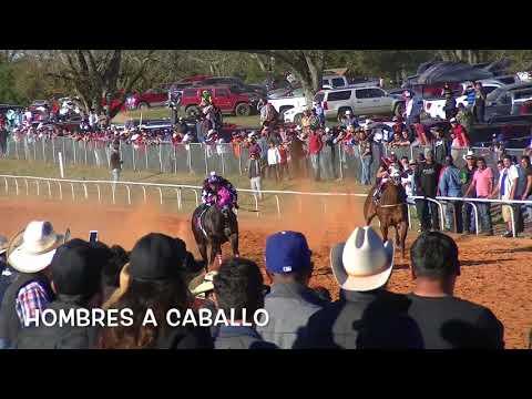 La Tarasca vs  La Vivi  11 26 17