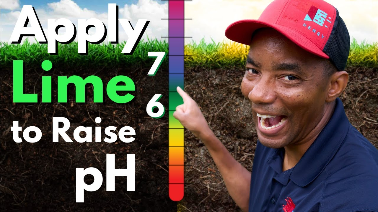 Increasing pH of your lawn with Lime