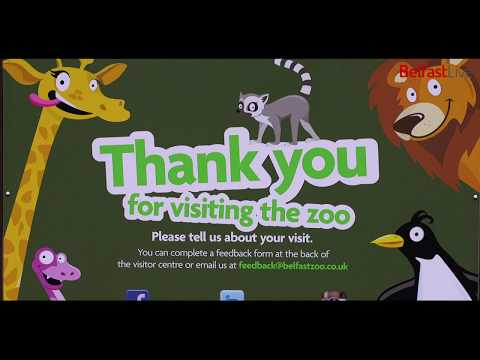 Belfast Zoo - A day in the life of a zookeeper