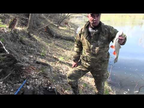 рыбалка на сакмаре оренбургской