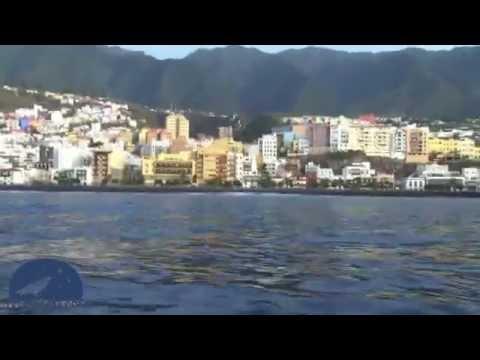 """""""Santa Cruz de La Palma, una ciudad secuestrada"""""""