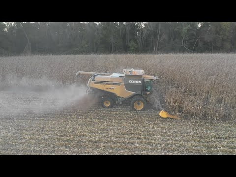 Ohio Fall Harvest 2018 day 24