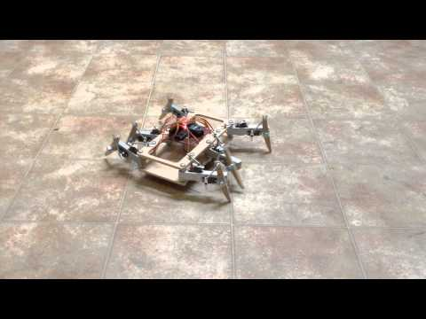 Showing off temporal servo movement