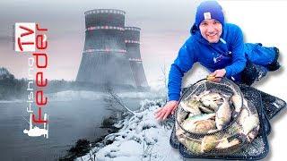 💥Vlog #32 Рыбалка на фидер. Атомный фидер в Удомле. Ловля тиляпии толстолобика сазана. Рыбалка 2019