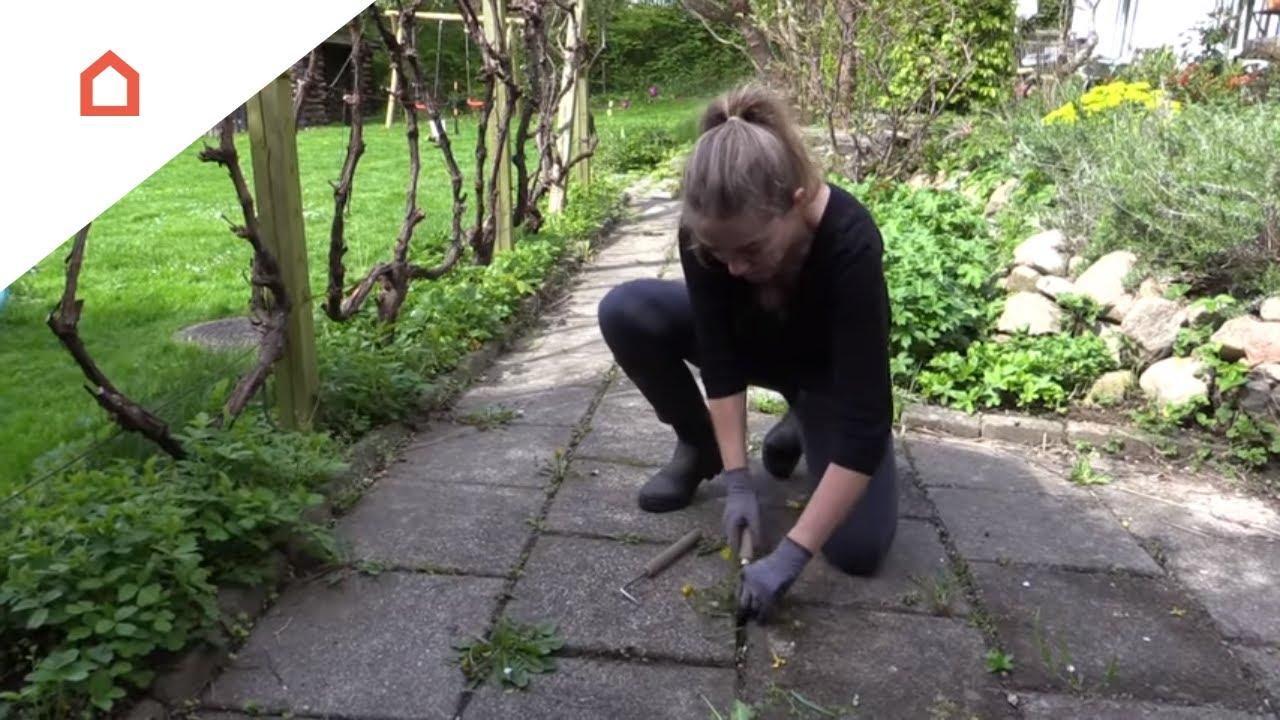 Vellidte Kom af med ukrudtet mellem fliserne - YouTube XY-93