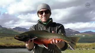 Рыбалка на Камчатке летом 2019 Ловля лосося чавычи кижуча