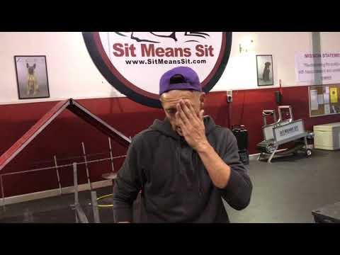 Sit Means Sit Franchise trainer's school