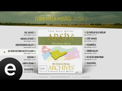 Şu Gecenin Gecesi Olsam (Türk Halk Müziği) Official Audio #şuuzungeceningecesiolsam #türkhalkmüziği