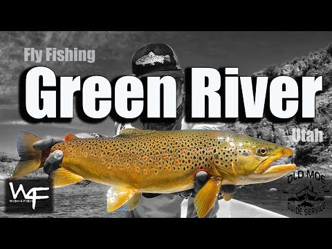 W4F - Fly Fishing Green River - Utah