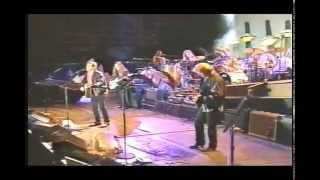 New Kid In Town - Eagles - New Zealand Live