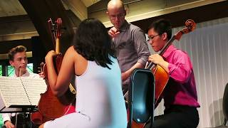 Brooklyn Rider at Madeline Island Chamber Music - 2018 Faculty Quartet