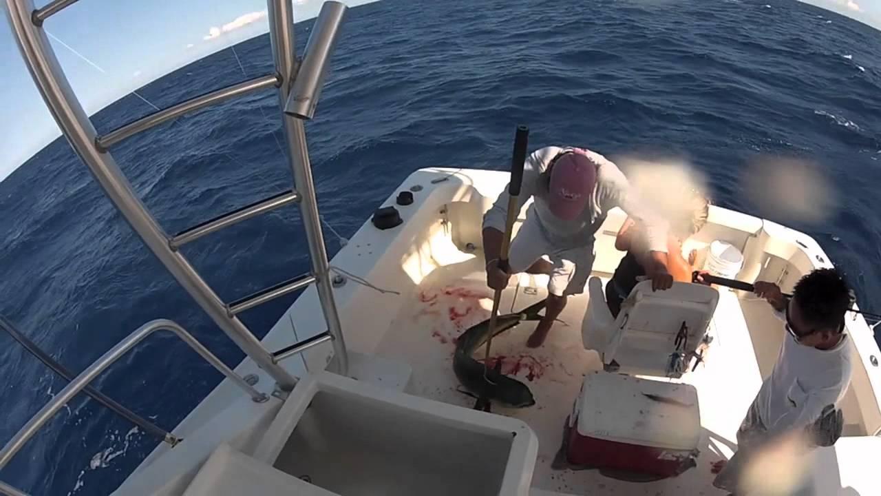 Wasabi loco deep sea fishing riviera maya mexico youtube for Deep sea fishing riviera maya