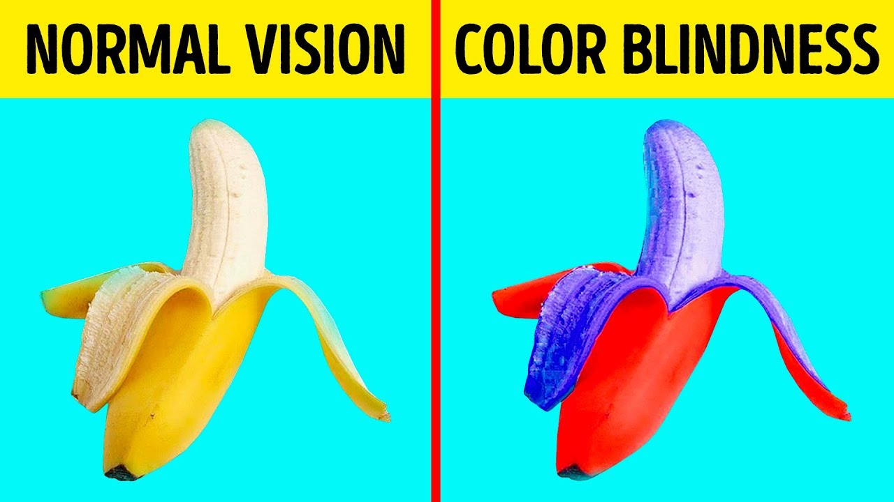 How Color Blind People See The World Youtube
