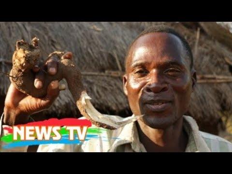 """""""Nghề"""" quan hệ với trẻ em tại Malawi"""