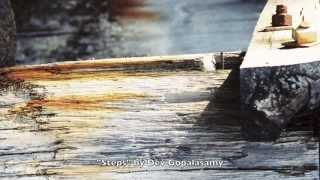 """Steps"" by Dev Gopalasamy"