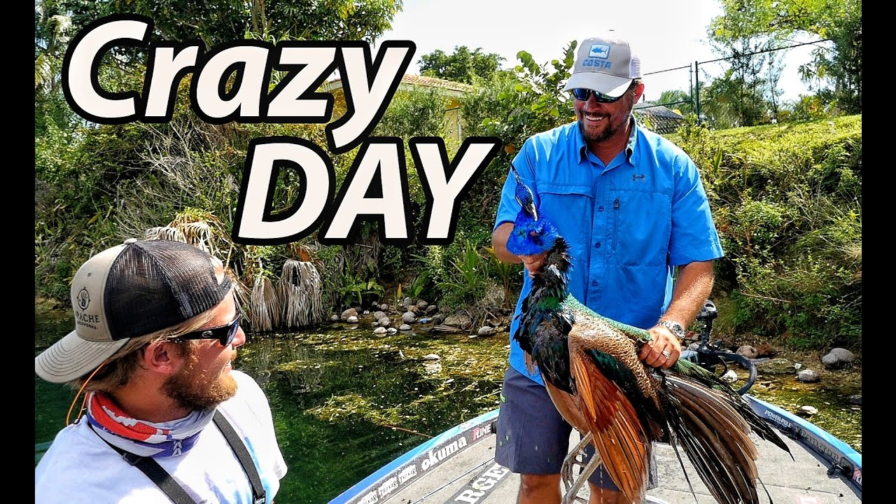 Fishing With Acorns Dead Peacock Birds And Giant Bass FT LUNKERSTV MONSTER MIKE