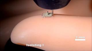 ロボットに触覚を与える生体スキンが3Dプリント技術で開発される(米研究)