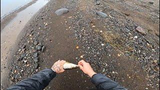 Рыбалка на берегу Енисея