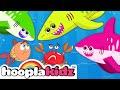 GO SHARK | Animal Songs | Nursery Rhymes For Babies by HooplaKidz